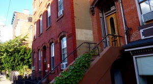 ivy covered brownstones